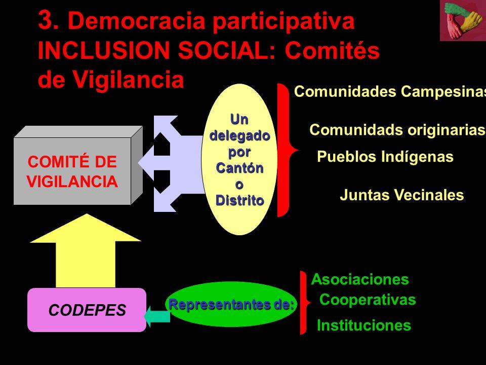 COMITÉ DE VIGILANCIA Un delegado por Cantón oDistrito 3.