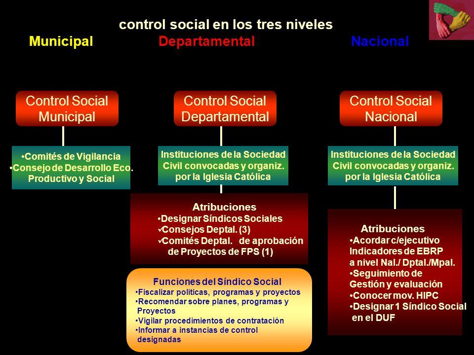 Control Social Municipal Control Social Departamental Control Social Nacional Comités de Vigilancia Consejo de Desarrollo Eco.