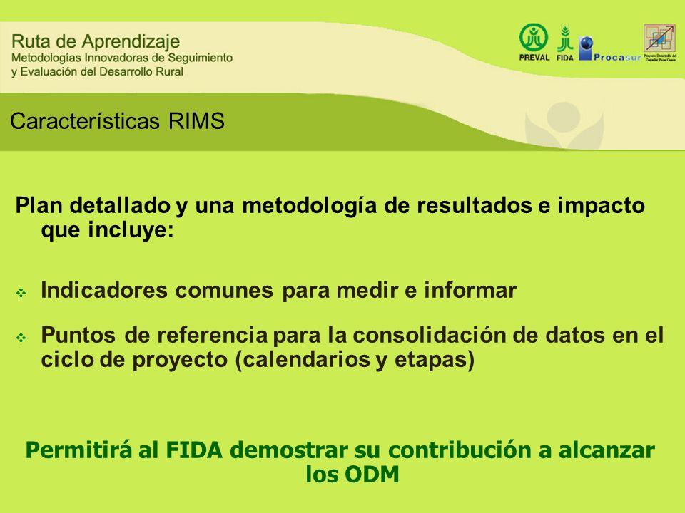 Plan detallado y una metodología de resultados e impacto que incluye: Indicadores comunes para medir e informar Puntos de referencia para la consolida