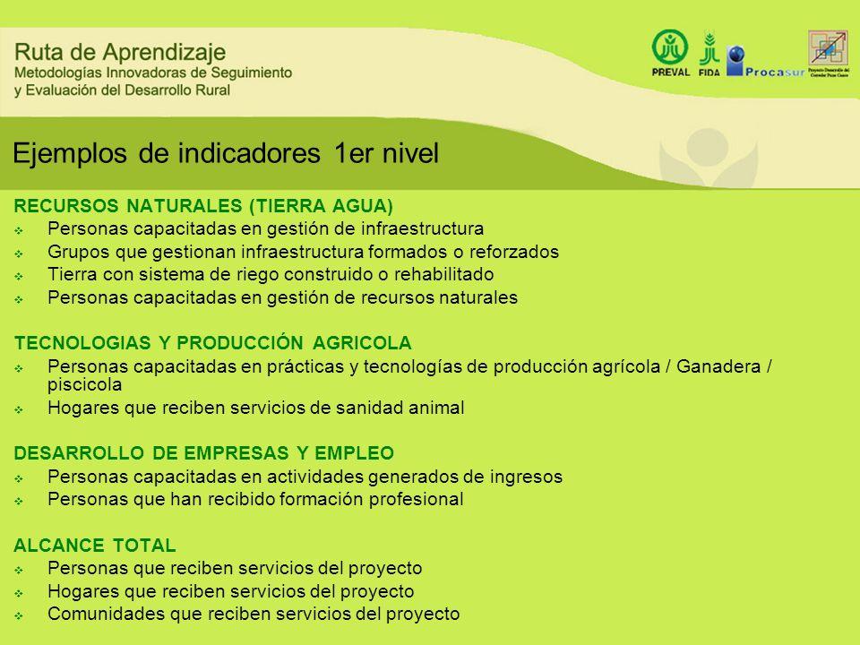 Ejemplos de indicadores 1er nivel RECURSOS NATURALES (TIERRA AGUA) Personas capacitadas en gestión de infraestructura Grupos que gestionan infraestruc