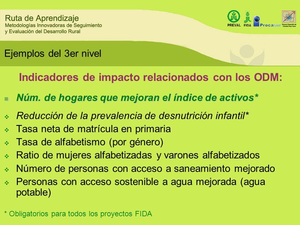 Ejemplos del 3er nivel Indicadores de impacto relacionados con los ODM: Núm. de hogares que mejoran el índice de activos* Núm. de hogares que mejoran