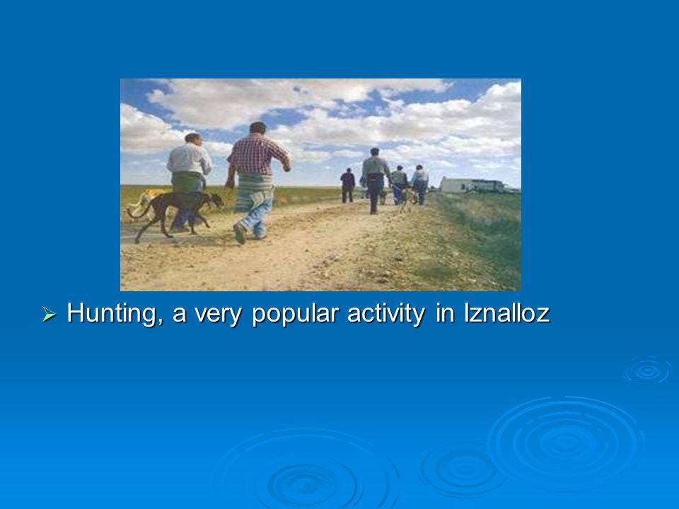 Hunting, a very popular activity in Iznalloz Hunting, a very popular activity in Iznalloz