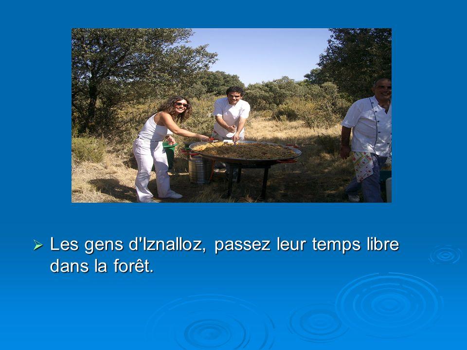 Les gens d'Iznalloz, passez leur temps libre dans la forêt. Les gens d'Iznalloz, passez leur temps libre dans la forêt.