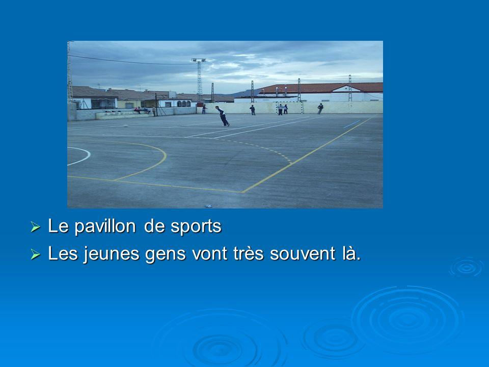 Le pavillon de sports Le pavillon de sports Les jeunes gens vont très souvent là. Les jeunes gens vont très souvent là.