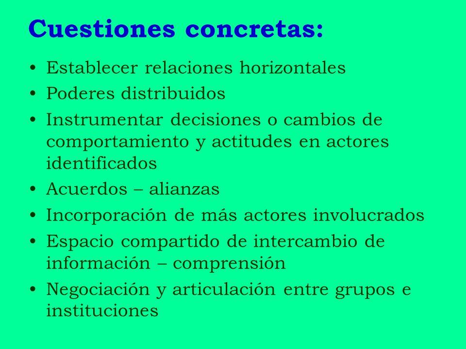 Cuestiones concretas: Establecer relaciones horizontales Poderes distribuidos Instrumentar decisiones o cambios de comportamiento y actitudes en actor