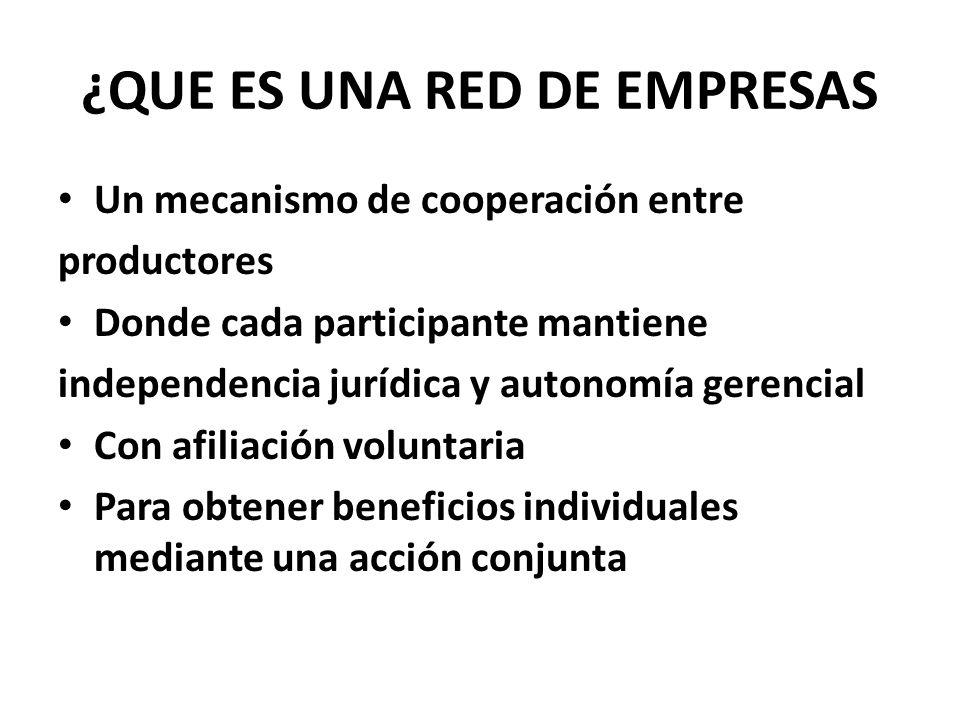 ¿QUE ES UNA RED DE EMPRESAS Un mecanismo de cooperación entre productores Donde cada participante mantiene independencia jurídica y autonomía gerencia