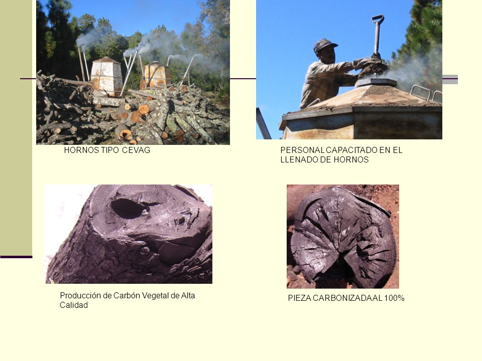HornoMetalBolónLadrillo Leña usada (metros apilados)7.57.014.0 Carbón producido (kg)7318192192 CalidadRequemadoBuena Tiempo encendido1 noche4 noches1/2 noche DATOS DE FABRICACIÓN Se realizó la medición de la producción de cada horno y el cálculo de los rendimientos, como sigue: NUESTROS HORNOS