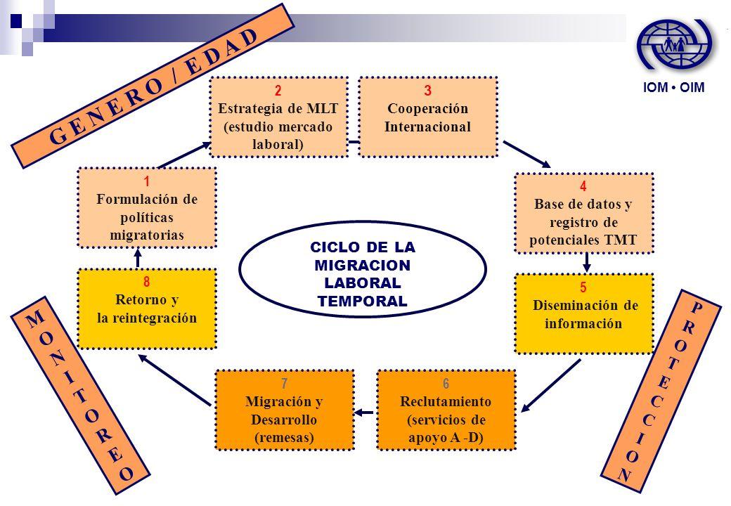 2 Estrategia de MLT (estudio mercado laboral) CICLO DE LA MIGRACION LABORAL TEMPORAL 3 Cooperación Internacional 1 Formulación de políticas migratoria
