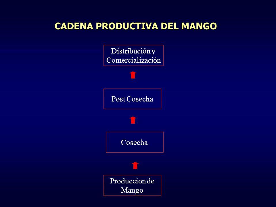 Distribución y Comercialización Post Cosecha Cosecha Produccion de Mango CADENAS DENTRO DE CADA ESLABÓN Empaque Calor Lavado Selección