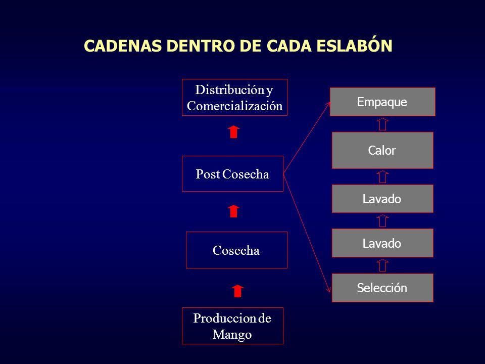 PROBLEMÁTICA ACTUAL DE LAS CADENAS PRODUCTIVAS .