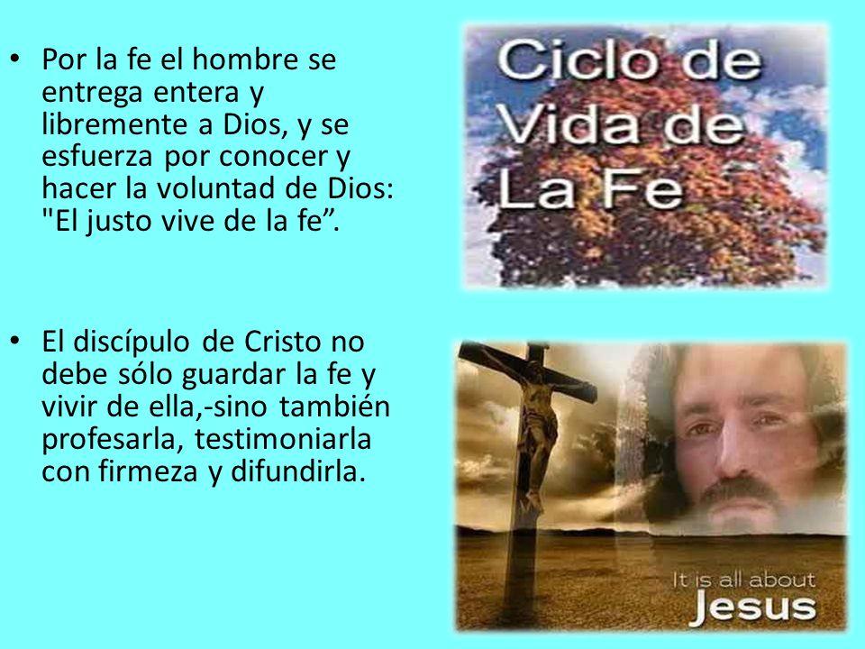 Por la fe el hombre se entrega entera y libremente a Dios, y se esfuerza por conocer y hacer la voluntad de Dios: