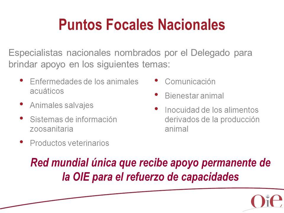 Enfermedades de los animales acuáticos Animales salvajes Sistemas de información zoosanitaria Productos veterinarios Comunicación Bienestar animal Ino