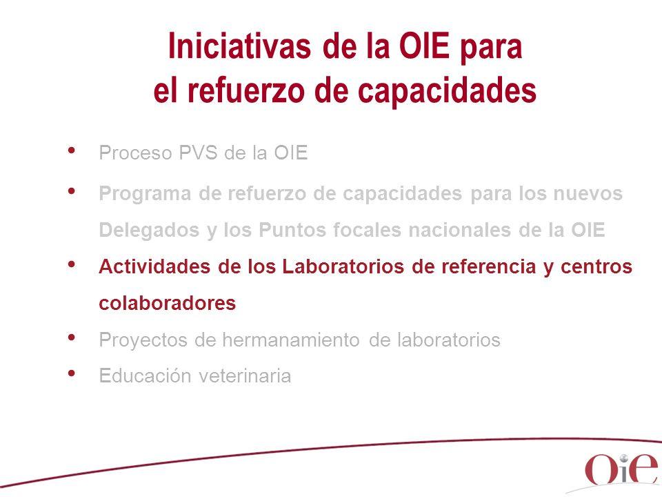 Iniciativas de la OIE para el refuerzo de capacidades Proceso PVS de la OIE Programa de refuerzo de capacidades para los nuevos Delegados y los Puntos focales nacionales de la OIE Actividades de los Laboratorios de referencia y centros colaboradores Proyectos de hermanamiento de laboratorios Educación veterinaria
