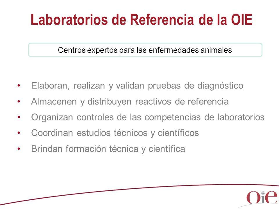 Centros expertos para las enfermedades animales Laboratorios de Referencia de la OIE Elaboran, realizan y validan pruebas de diagnóstico Almacenen y d