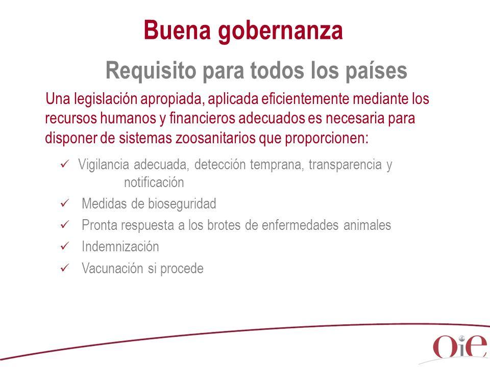 Buena gobernanza Requisito para todos los países Una legislación apropiada, aplicada eficientemente mediante los recursos humanos y financieros adecua