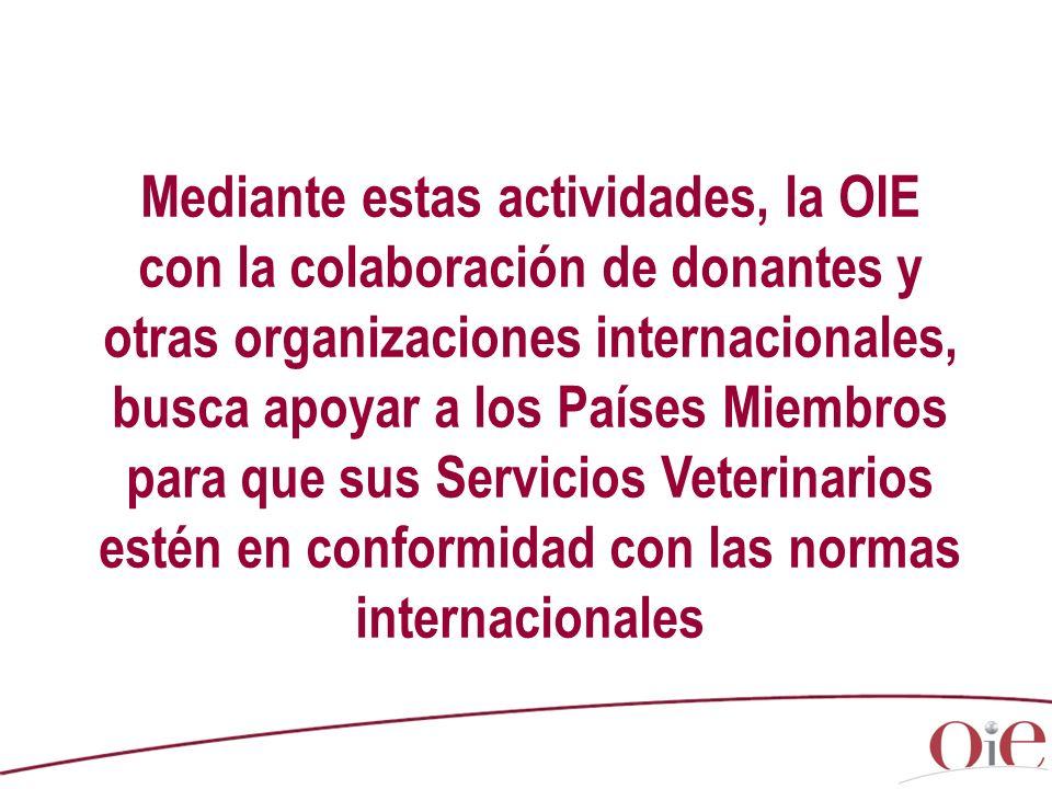 Mediante estas actividades, la OIE con la colaboración de donantes y otras organizaciones internacionales, busca apoyar a los Países Miembros para que sus Servicios Veterinarios estén en conformidad con las normas internacionales