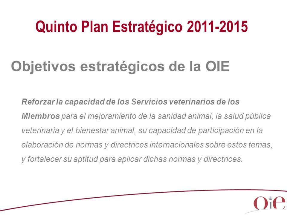 Reforzar la capacidad de los Servicios veterinarios de los Miembros para el mejoramiento de la sanidad animal, la salud pública veterinaria y el bienestar animal, su capacidad de participación en la elaboración de normas y directrices internacionales sobre estos temas, y fortalecer su aptitud para aplicar dichas normas y directrices.