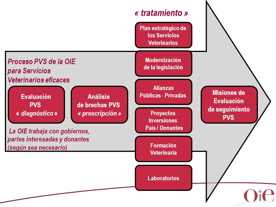 Proceso PVS de la OIE para Servicios Veterinarios eficaces La OIE trabaja con gobiernos, partes interesadas y donantes (según sea necesario) Plan estratégico de los Servicios Veterinarios Modernización de la legislación Proyectos Inversiones País / Donantes Formación Veterinaria Evaluación PVS « diagnóstico » Análisis de brechas PVS « prescripción » Misiones de Evaluación de seguimiento PVS Laboratorios Alianzas Públicas - Privadas « tratamiento »