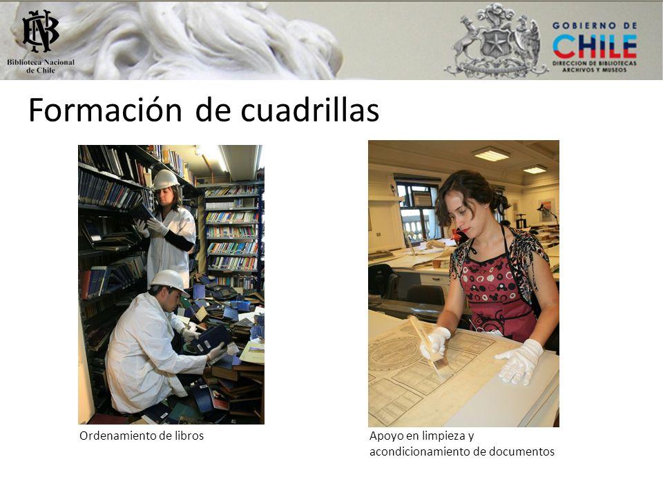 Formación de cuadrillas Ordenamiento de librosApoyo en limpieza y acondicionamiento de documentos
