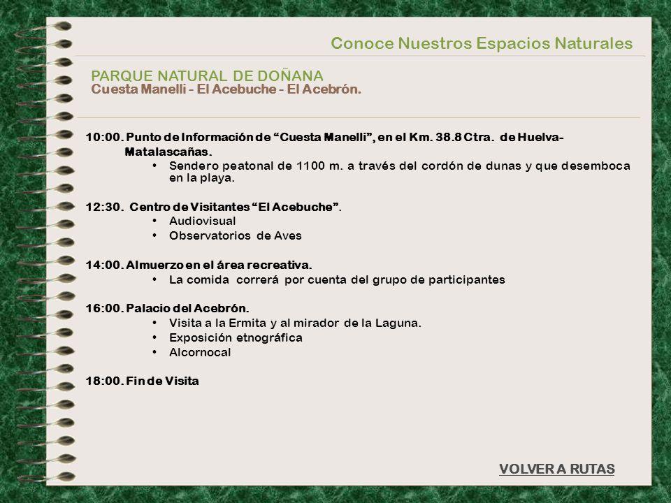 Conoce Nuestros Espacios Naturales PARQUE NATURAL DE DOÑANA Cuesta Manelli - El Acebuche - El Acebrón. VOLVER A RUTAS 10:00. Punto de Información de C