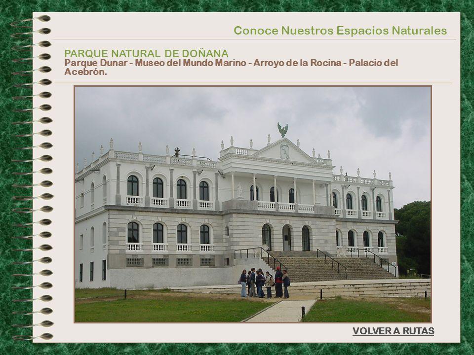 Conoce Nuestros Espacios Naturales PARQUE NATURAL DE DOÑANA Parque Dunar - Museo del Mundo Marino - Arroyo de la Rocina - Palacio del Acebrón. VOLVER