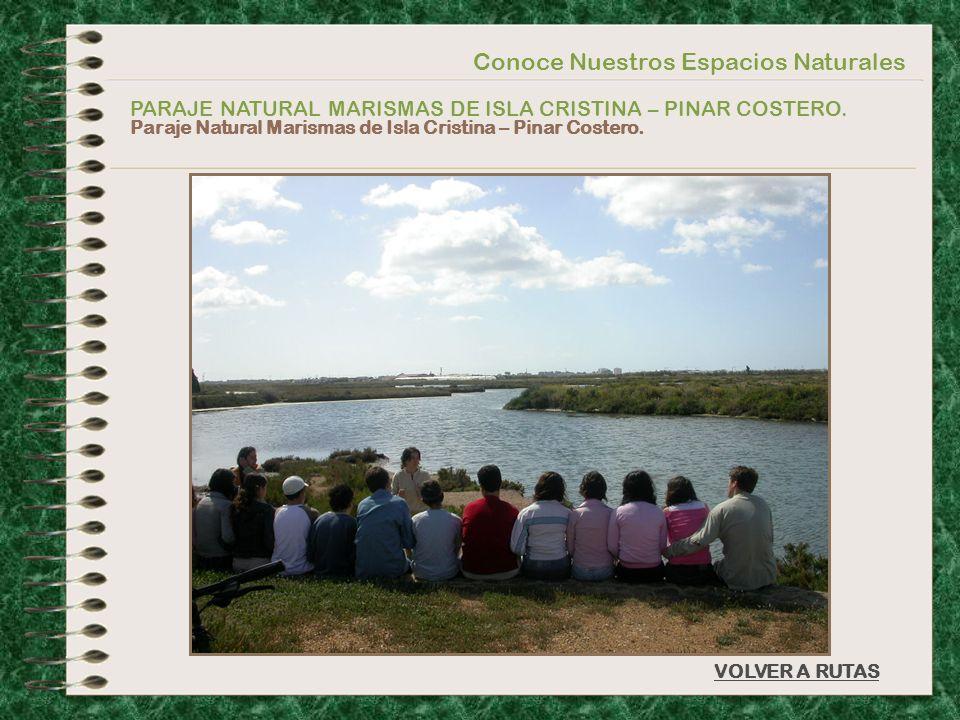 Conoce Nuestros Espacios Naturales PARAJE NATURAL MARISMAS DE ISLA CRISTINA – PINAR COSTERO. Paraje Natural Marismas de Isla Cristina – Pinar Costero.