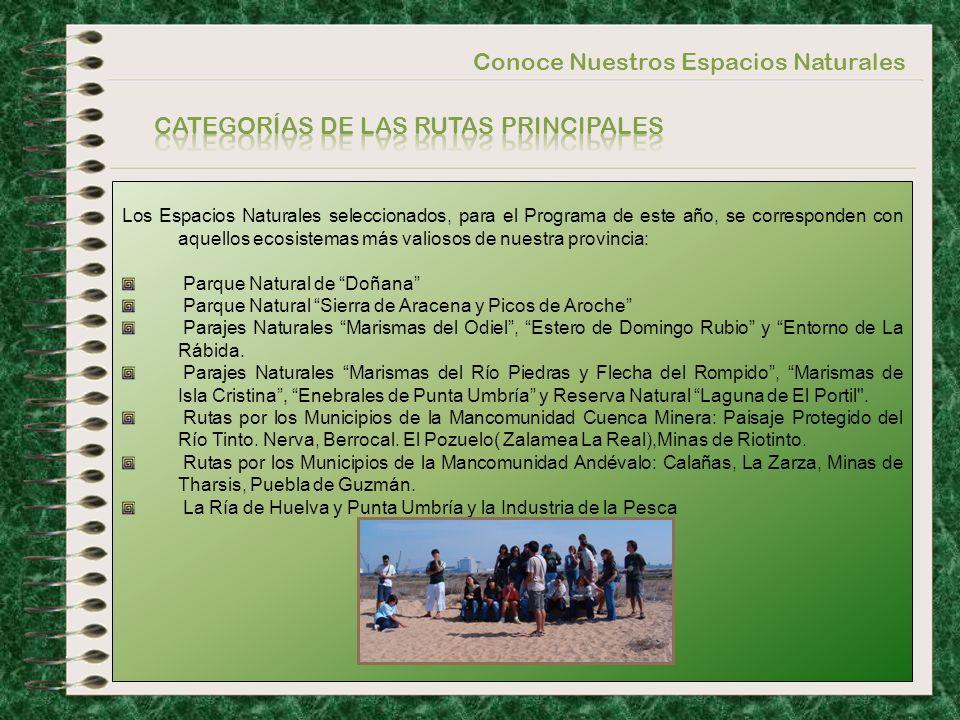 Conoce Nuestros Espacios Naturales 1)Podrán participar en este Programa toda la población juvenil de la Provincia de Huelva, a través de sus respectivos Ayuntamientos y Mancomunidades.