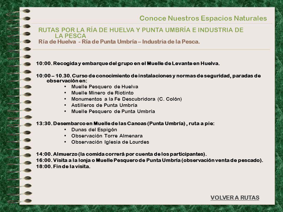 Conoce Nuestros Espacios Naturales VOLVER A RUTAS 10:00. Recogida y embarque del grupo en el Muelle de Levante en Huelva. 10:00 – 10.30. Curso de cono