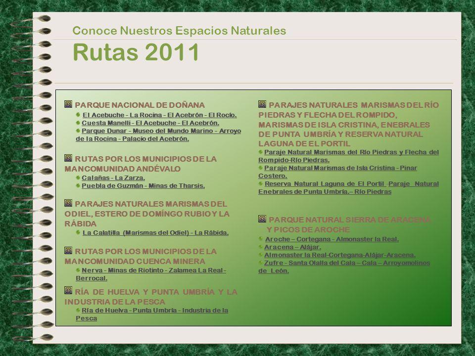 Conoce Nuestros Espacios Naturales Rutas 2011 PARQUE NACIONAL DE DOÑANA El Acebuche - La Rocina - El Acebrón - El Rocío. El Acebuche - La Rocina - El