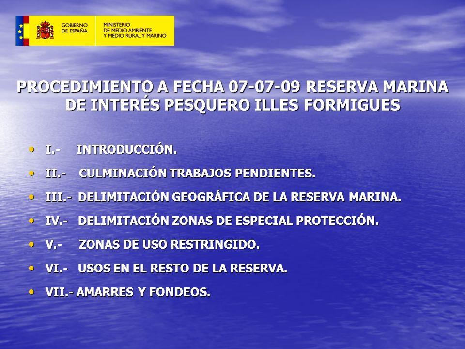 PROCEDIMIENTO A FECHA 07-07-09 RESERVA MARINA DE INTERÉS PESQUERO ILLES FORMIGUES I.- INTRODUCCIÓN. I.- INTRODUCCIÓN. II.- CULMINACIÓN TRABAJOS PENDIE