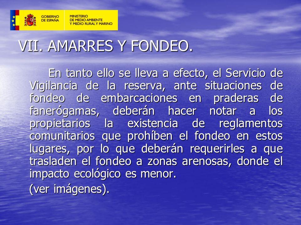 VII. AMARRES Y FONDEO. En tanto ello se lleva a efecto, el Servicio de Vigilancia de la reserva, ante situaciones de fondeo de embarcaciones en prader