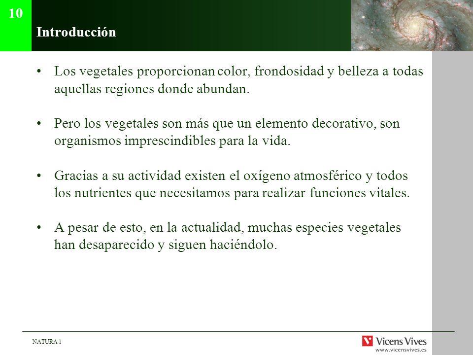 NATURA 1 Introducción Los vegetales proporcionan color, frondosidad y belleza a todas aquellas regiones donde abundan. Pero los vegetales son más que