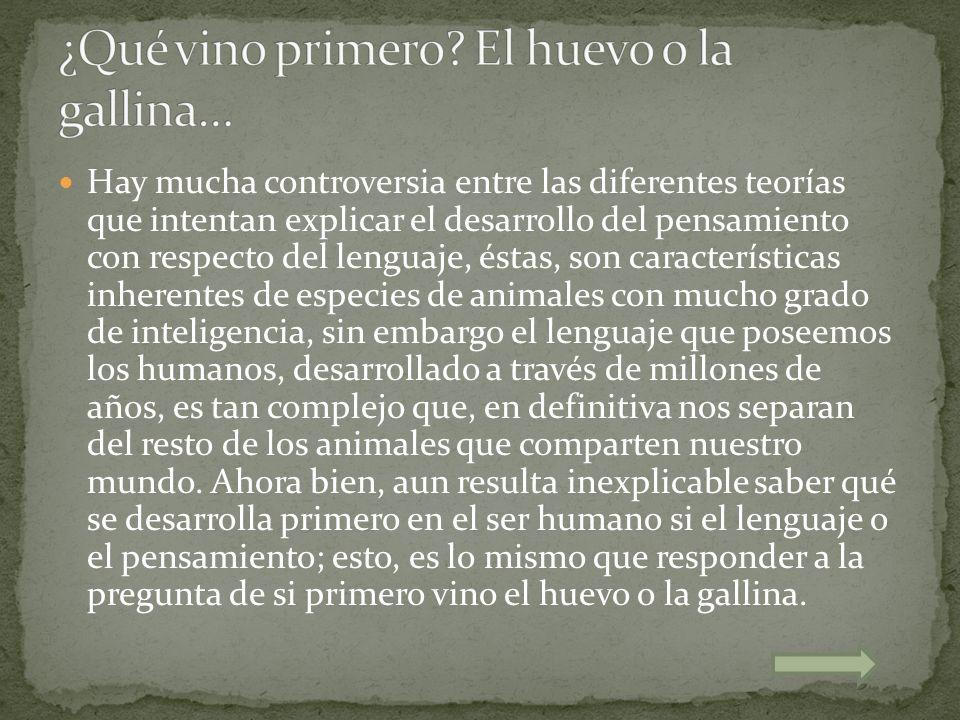 Hay mucha controversia entre las diferentes teorías que intentan explicar el desarrollo del pensamiento con respecto del lenguaje, éstas, son caracter