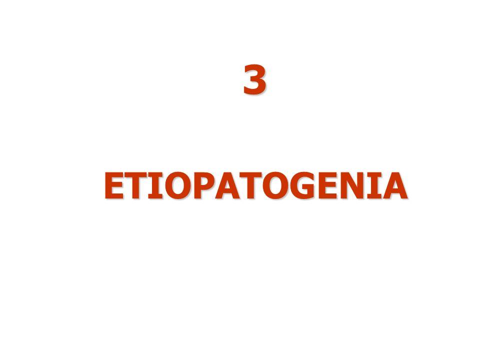 3ETIOPATOGENIA