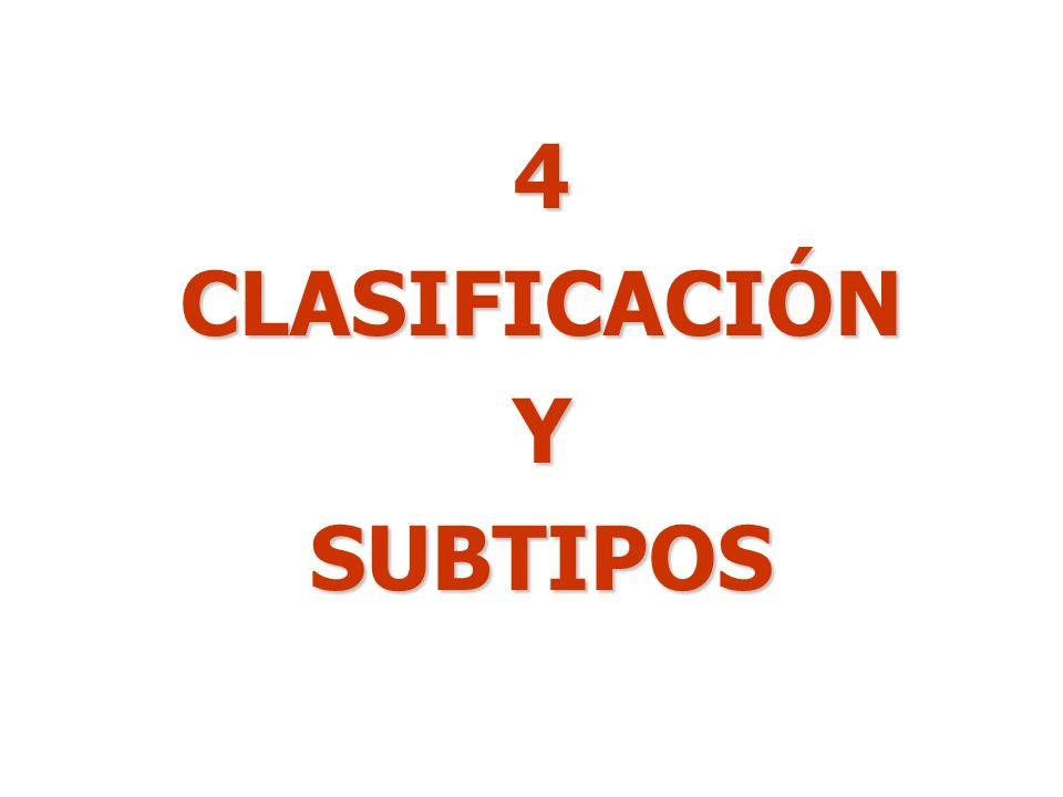 4CLASIFICACIÓNYSUBTIPOS