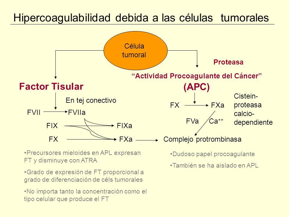 Hipercoagulabilidad por la respuesta de células sanas Célula tumoral Monocitos Plaquetas Células endoteliales FT otros activadores directos del FX Complemento Citoquinas Inmunocomplejos Linf T Reactividad Generación de trombina Agregación ADP FvW TNF IL-1 Citoquinas Moléc.