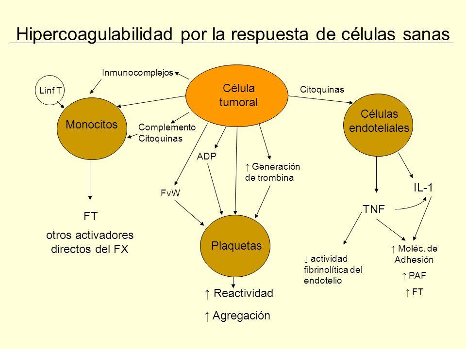 Profilaxis de TEV en el cáncer Catéteres Venosos Centrales (CVC) Frecuencia: estudio prospectivo n=145 – 3% sintomática –12% con ecografía Luciani A et al.
