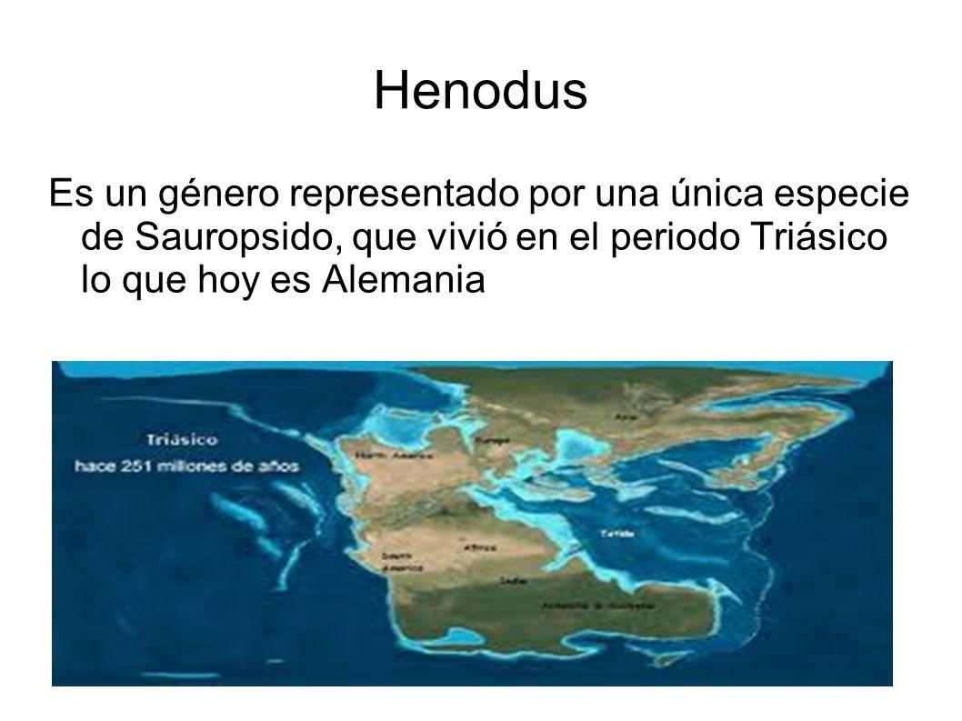 Henodus Es un género representado por una única especie de Sauropsido, que vivió en el periodo Triásico lo que hoy es Alemania