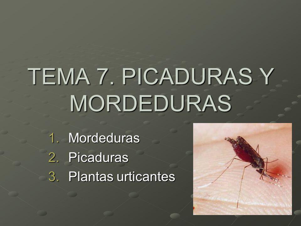 TEMA 7. PICADURAS Y MORDEDURAS 1.Mordeduras 2.Picaduras 3.Plantas urticantes