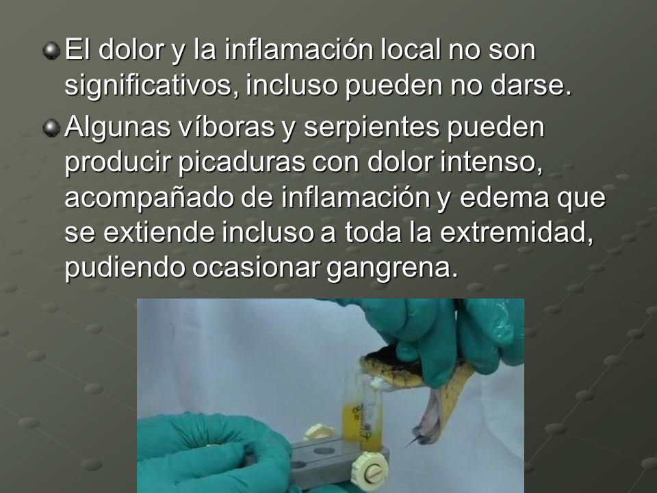 El dolor y la inflamación local no son significativos, incluso pueden no darse. Algunas víboras y serpientes pueden producir picaduras con dolor inten