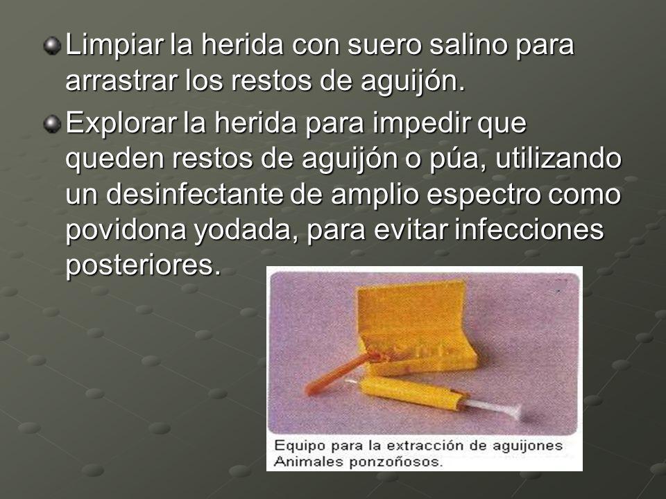 Limpiar la herida con suero salino para arrastrar los restos de aguijón. Explorar la herida para impedir que queden restos de aguijón o púa, utilizand