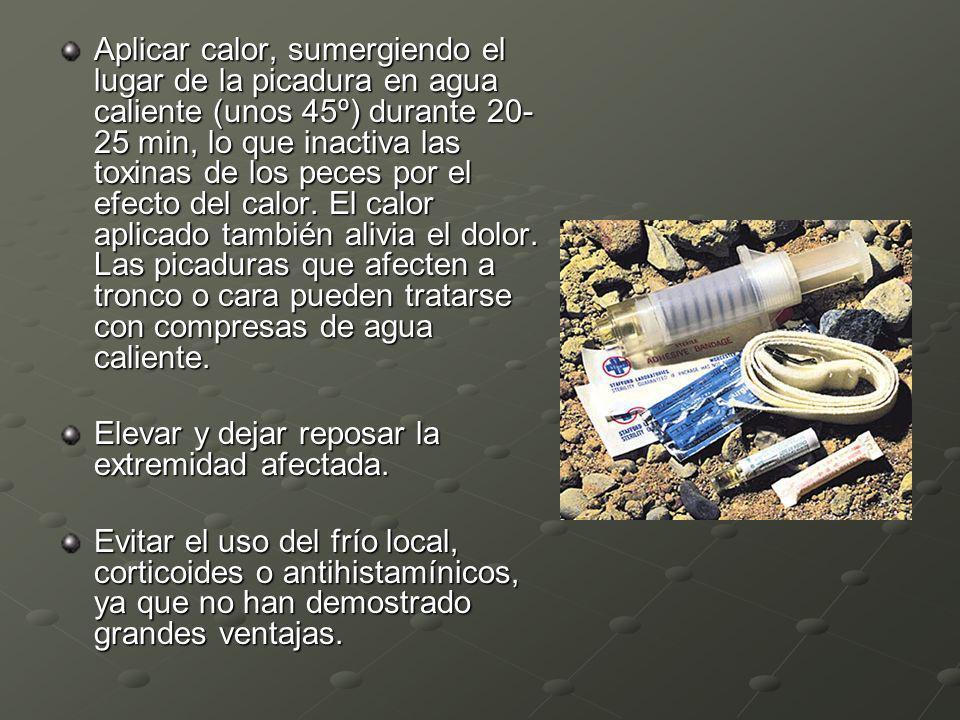 Aplicar calor, sumergiendo el lugar de la picadura en agua caliente (unos 45º) durante 20- 25 min, lo que inactiva las toxinas de los peces por el efe