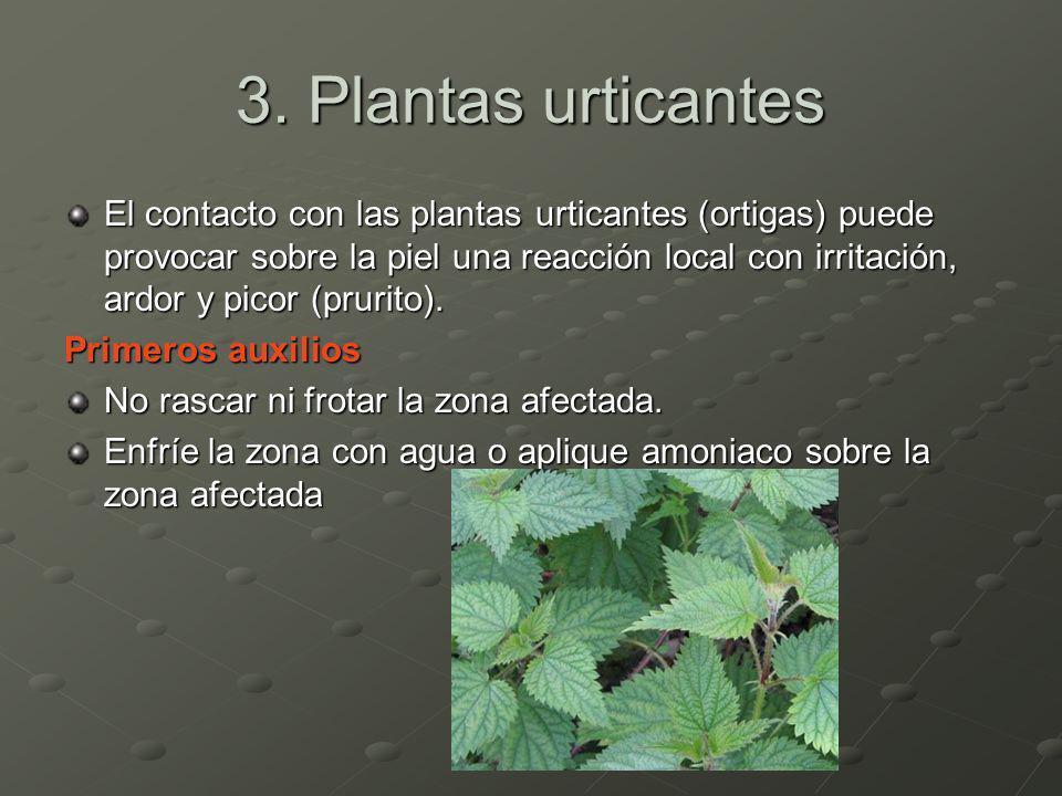 3. Plantas urticantes El contacto con las plantas urticantes (ortigas) puede provocar sobre la piel una reacción local con irritación, ardor y picor (