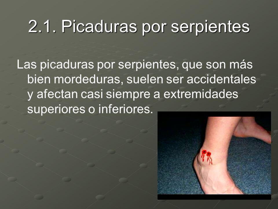 2.1. Picaduras por serpientes Las picaduras por serpientes, que son más bien mordeduras, suelen ser accidentales y afectan casi siempre a extremidades