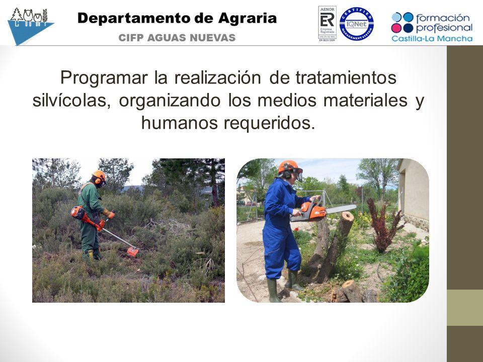 Programar la realización de tratamientos silvícolas, organizando los medios materiales y humanos requeridos.
