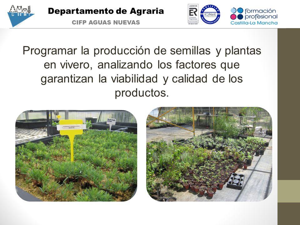 Programar la producción de semillas y plantas en vivero, analizando los factores que garantizan la viabilidad y calidad de los productos.