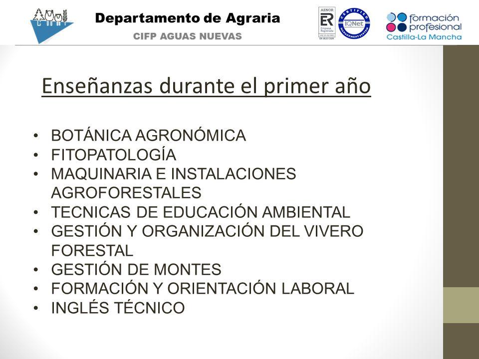 Enseñanzas durante el primer año BOTÁNICA AGRONÓMICA FITOPATOLOGÍA MAQUINARIA E INSTALACIONES AGROFORESTALES TECNICAS DE EDUCACIÓN AMBIENTAL GESTIÓN Y