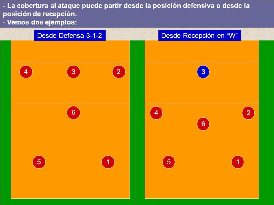 1 3 5 4 6 2 - La cobertura al ataque puede partir desde la posición defensiva o desde la posición de recepción.