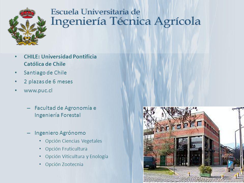 CHILE: Universidad Pontificia Católica de Chile Santiago de Chile 2 plazas de 6 meses www.puc.cl – Facultad de Agronomía e Ingeniería Forestal – Ingen