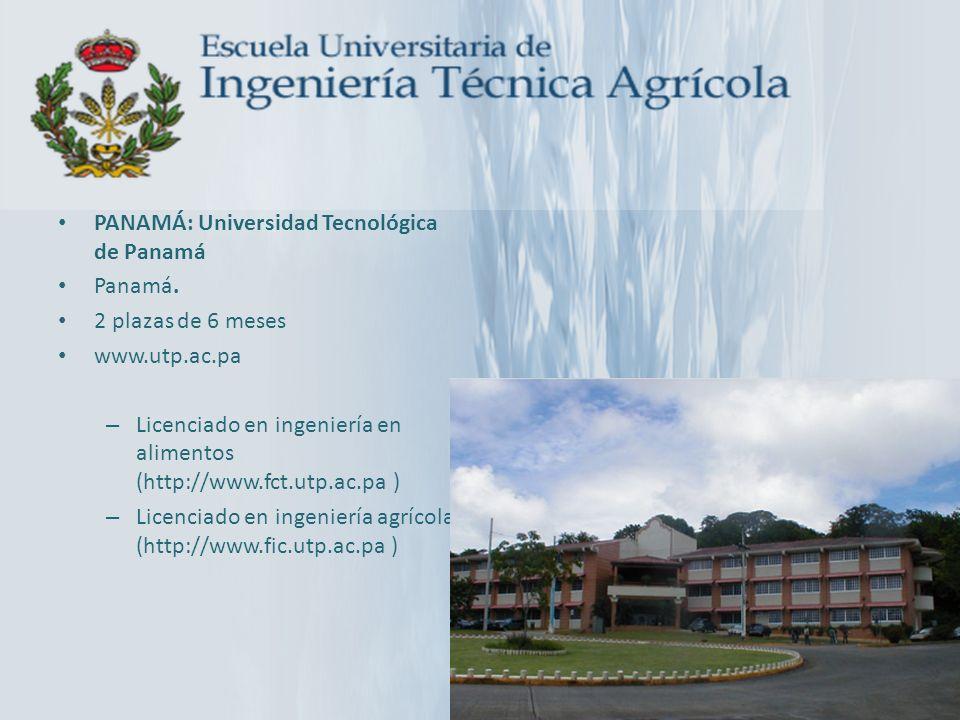 PANAMÁ: Universidad Tecnológica de Panamá Panamá. 2 plazas de 6 meses www.utp.ac.pa – Licenciado en ingeniería en alimentos (http://www.fct.utp.ac.pa